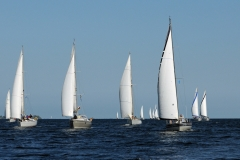 Baltic-cup-25