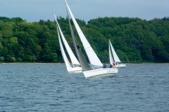 Baltic-cup-17