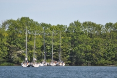 Baltic-cup-41